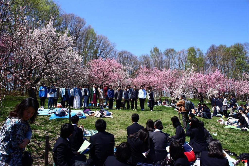 平岡公園梅林に高校生たちの歌声が響く