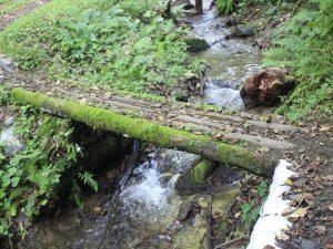 最後にこのような木橋を渡ります