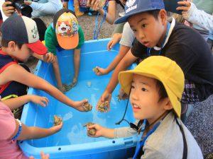 トノサマガエルに触る子供たち