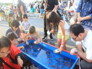 夏の定番、金魚すくいも人気
