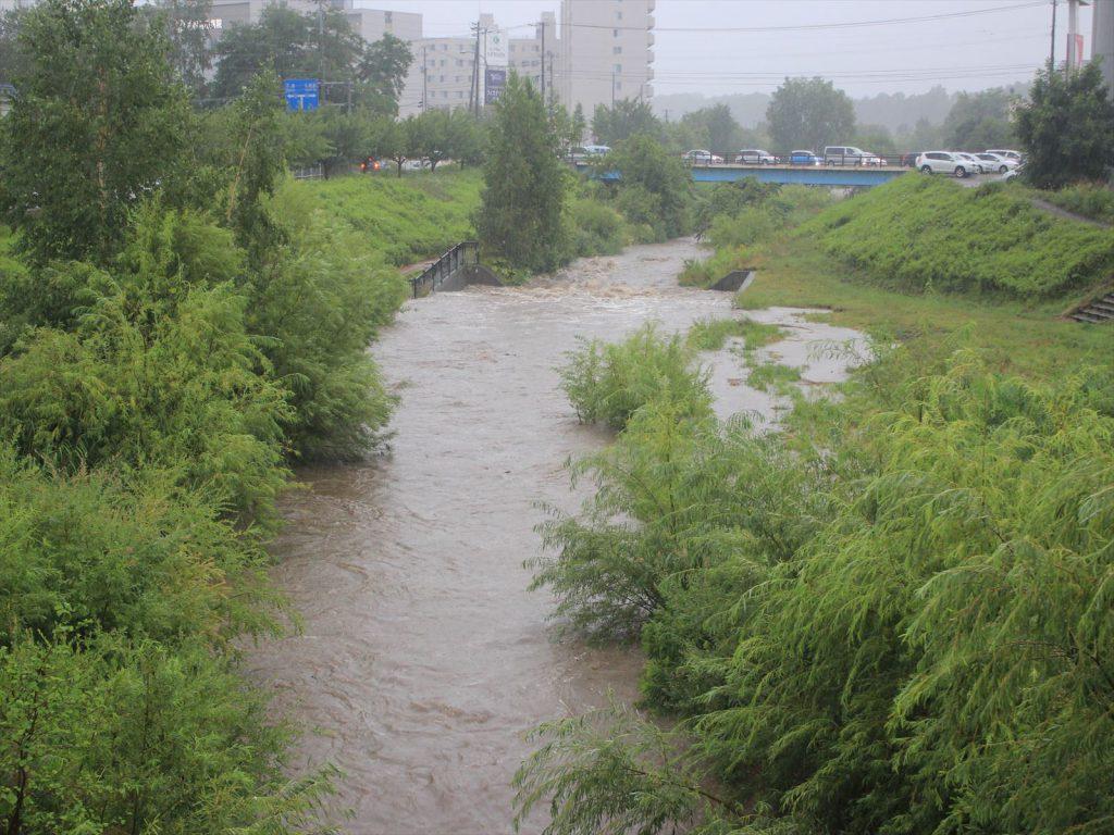 河川敷まで水が上がり始めた厚別川=8月17日17時30分、国道36号と旧道の間