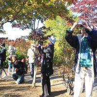 樹木の撮影をする受講生たち=10月19日、平岡樹芸センター