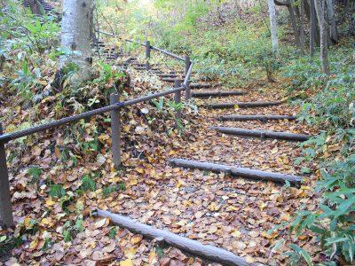 落ち葉の階段=平岡公園